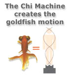Goldfish motion is key